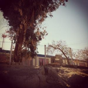 Campamento (2)
